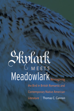 Skylark Meets Meadowlark book cover